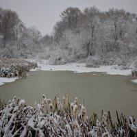 Первый снег :: Константин