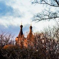 Купола :: Viktory Fedorova
