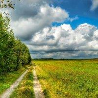 Природа на исходе лета :: Милешкин Владимир Алексеевич
