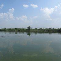 река Иргиз :: tgtyjdrf