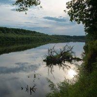 Солнце в речке. :: Андрий Майковский