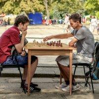 шахматисты :: Екатерина Исаенко