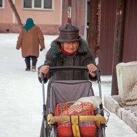 Заброшенная жизнь :: Виталий Косицын