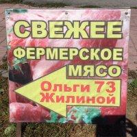 Бедная Ольга.... :: Людмила Шустова