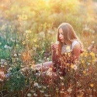 Прекрасное лето :: Вероника Саркисян
