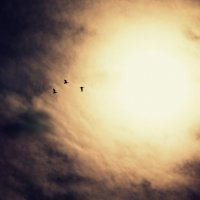 ... к горизонту :: Татьянка Ловик