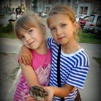 Подружайки с любимым хомячком. :: Мила Бовкун