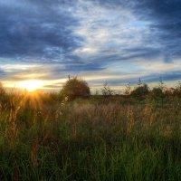 Уходит солнце на покой :: Наталья Лакомова