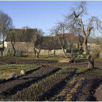 Огородик в деревне :: Александр Максимов