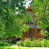 Дом-музей художника П.П.Чистякова :: Олег Попков
