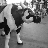 печальная корова :: Ольга Заметалова