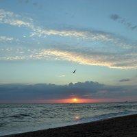 Азовское море .. :: Клара