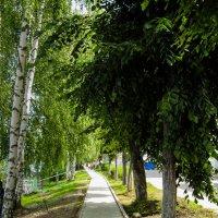 Волга. г.Плёс. Набережная. :: Владимир Безбородов