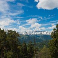 В горах Архыза :: Евгений Михайленко