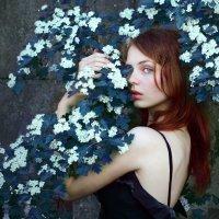 =) :: Sandra Snow