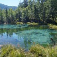 Гейзеровое озеро. Улаганский район, Республика Алтай :: Кристина Воробьева