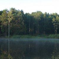 Утренняя рыбалка прекрасна :: Валерия