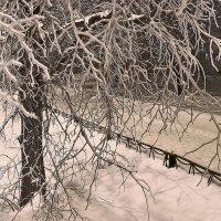 Ледяная графика :: sergej-smv