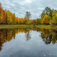 Осенняя... :: Сергей