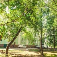 Лето в сквере :: Вячеслав Баширов