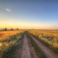 Дорога домой :: Сергей