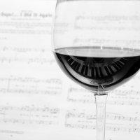 Глоток вина для музыканта :: Ксения Кузнецова