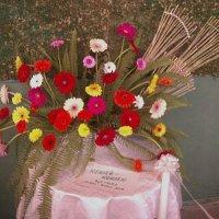 Выставка цветов-Флора :: Елена *