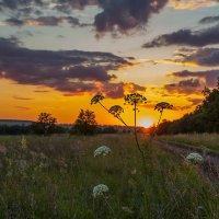 Персиком нежным закат догорает... :: Юлия Топоркова