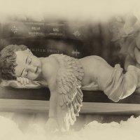 Спящий ангел :: Вера Лучникова