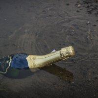 Шампанское :: Георгий Морозов