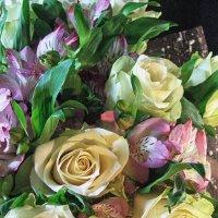 Цветы. :: Larisa