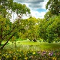 ...Место желанное Тихая Заводь,светлая грусть и нежная радость.. :: Алла Кочергина