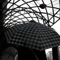 клетчатый зонт :: Ольга Заметалова