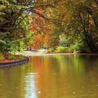 Осени пряди над каналом :: Alexander Andronik