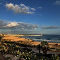 Утренний пляж. :: Leonid Korenfeld