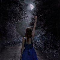 Лунная тропа :: Дмитрий Ценгуев
