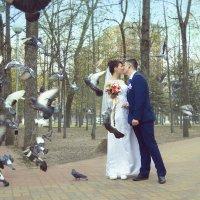 Любовь и голуби :: Юлиана Филипцева