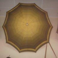 Зонт :: Tarka
