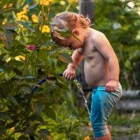 Дети-цветы жизни :: LNemykina
