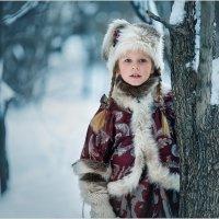 Зима :: Ирина Абрамова