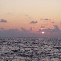 Отдых на море-104. :: Руслан Грицунь