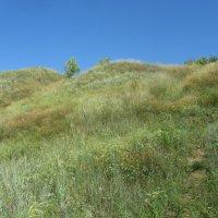 холмы Саратовской области :: tgtyjdrf