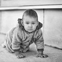 малышка Александра :: Евгения Шаталова