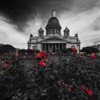 Исаакиевский собор. Санкт-Петербург :: Александр Лебедев