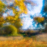 Осенняя фантазия :: Виталий