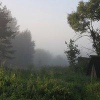 Утренний пейзаж :: Алексей Дмитриев