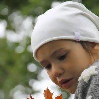 Кленовое настроение... :: Tatiana Markova