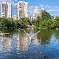 Пора ... :: Kirill