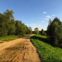Как я встречал осень :: Андрей Лукьянов