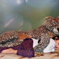 Сон в  надежных лапах.. :: Клара